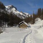 Découvrez l'un des tout premiers trails sur neige : le Trail Blanc