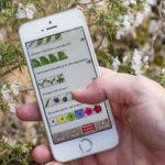 EcoBalade : une appli et un site pour découvrir la nature, pas à pas