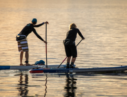 choisir son paddle